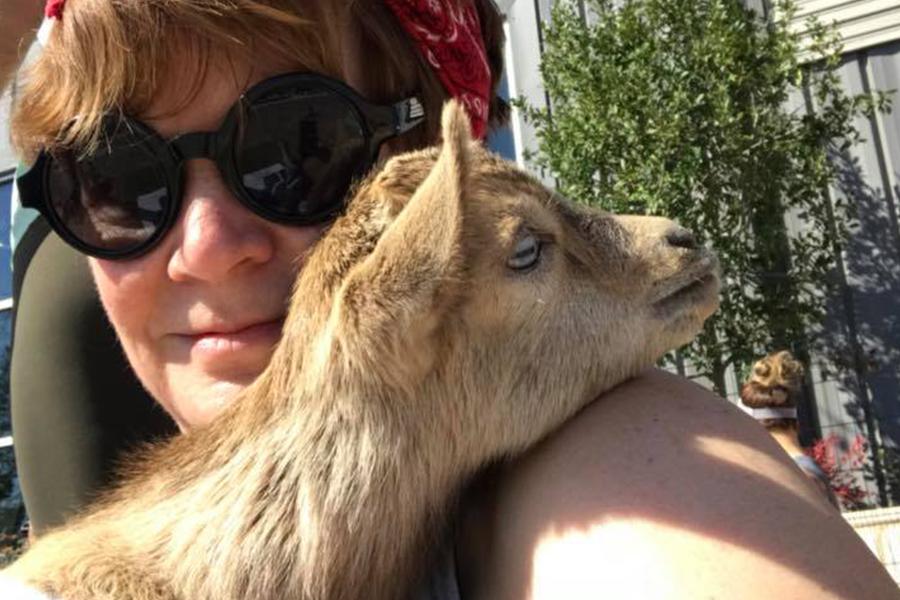 goat-love