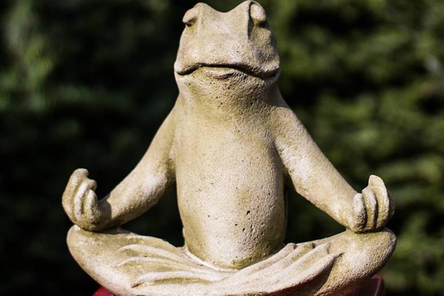 yoga-in-garden